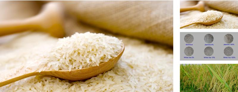 Nông sản gạo